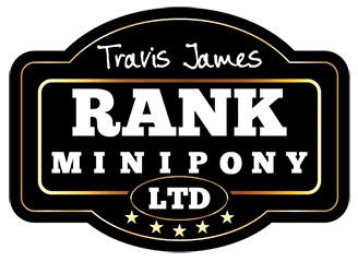 Rank Mini Pony Logo